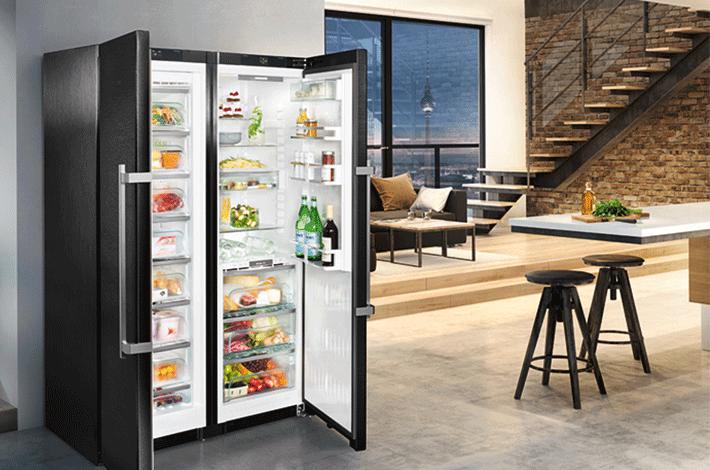 Der sprechende kühlschrank