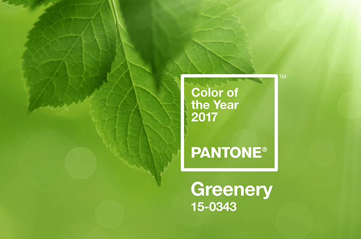 Farbe des Jahres 2017: <strong>Greenery</strong>